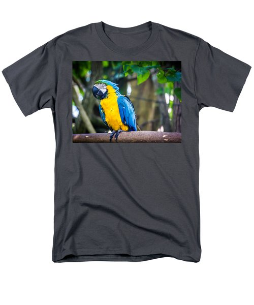Tropical Parrot Men's T-Shirt  (Regular Fit)