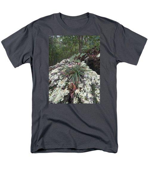 White Lichen Men's T-Shirt  (Regular Fit) by Robert Nickologianis