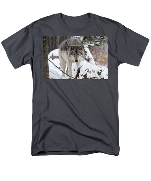 Men's T-Shirt  (Regular Fit) featuring the photograph Winter Timber Wolf by Wolves Only