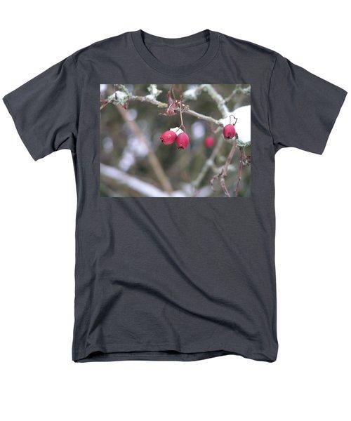Berries In Winter Men's T-Shirt  (Regular Fit)
