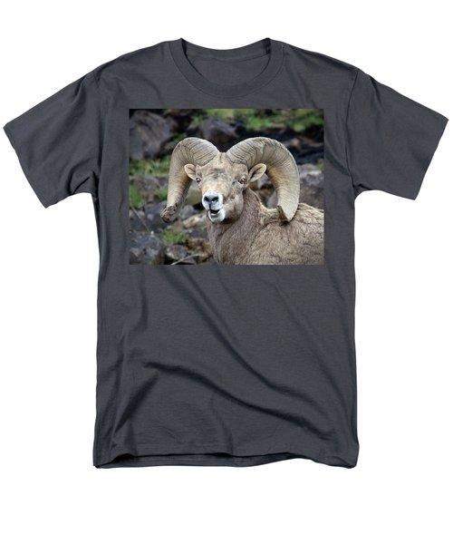 Men's T-Shirt  (Regular Fit) featuring the photograph Bighorn Giant by Steve McKinzie