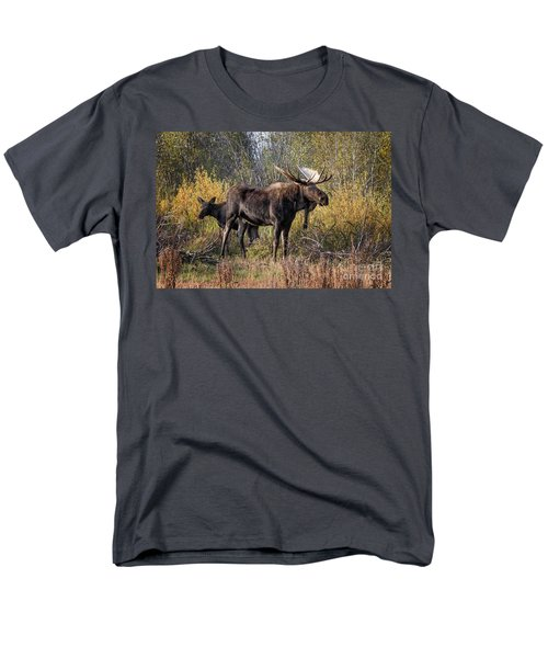 Bull Tolerates Calf Men's T-Shirt  (Regular Fit) by Ronald Lutz