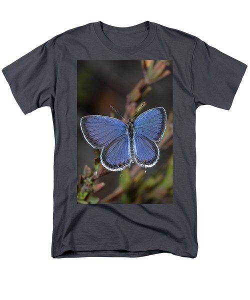 Eastern Tailed Blue Butterfly Men's T-Shirt  (Regular Fit) by Daniel Reed