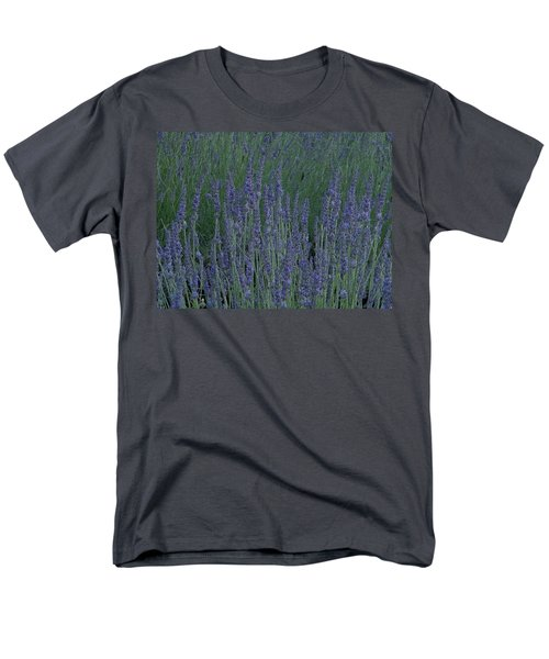 Men's T-Shirt  (Regular Fit) featuring the photograph Just Lavender by Manuela Constantin