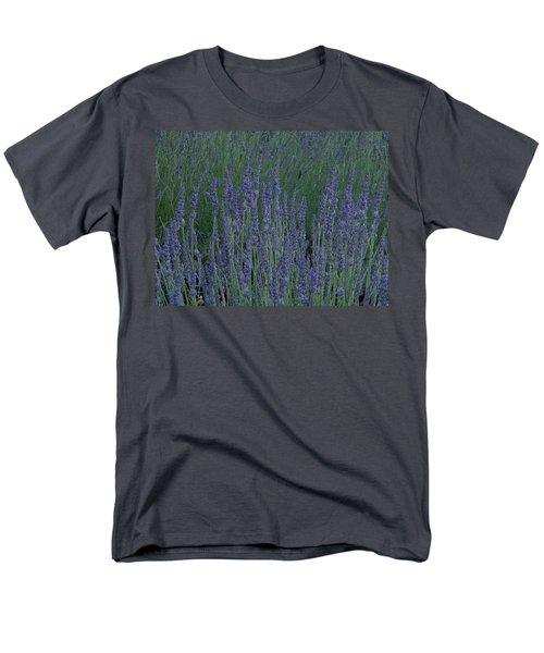 Just Lavender Men's T-Shirt  (Regular Fit)