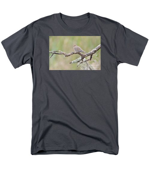 Early Mourning Dove Men's T-Shirt  (Regular Fit) by Kathy Gibbons