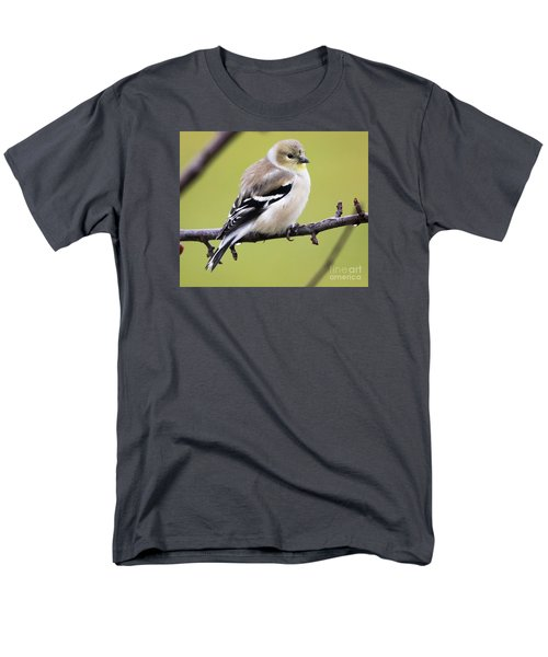 American Goldfinch Men's T-Shirt  (Regular Fit) by Ricky L Jones