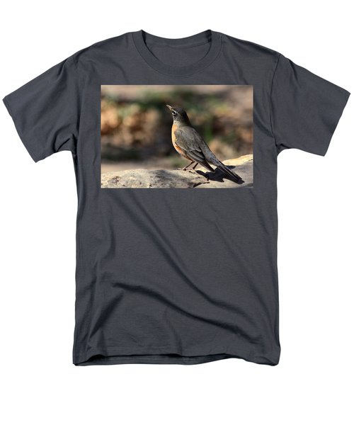 American Robin On Rock Men's T-Shirt  (Regular Fit) by Sheila Brown