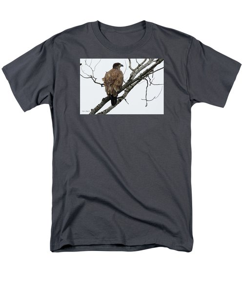 Men's T-Shirt  (Regular Fit) featuring the photograph Juvenile Eagle  by Steven Clipperton