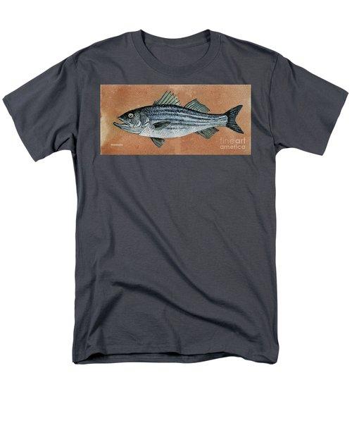 Striper Men's T-Shirt  (Regular Fit)