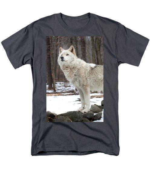 A Wolfs Modeling Pose Men's T-Shirt  (Regular Fit)