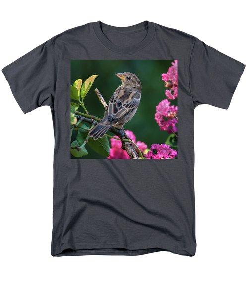 Adorable House Finch Men's T-Shirt  (Regular Fit)