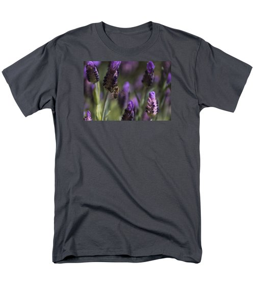 Bee's Delight Men's T-Shirt  (Regular Fit) by Laura Pratt