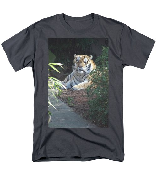 Men's T-Shirt  (Regular Fit) featuring the photograph Beyond The Branches by Laddie Halupa