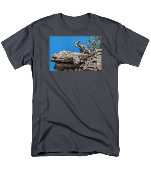 Big Horn Lamb Overlooking Hornets Nest Men's T-Shirt  (Regular Fit) by Stephen  Johnson