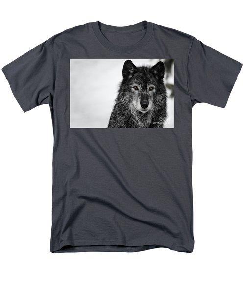 Black Wolf I Men's T-Shirt  (Regular Fit) by Brad Allen Fine Art