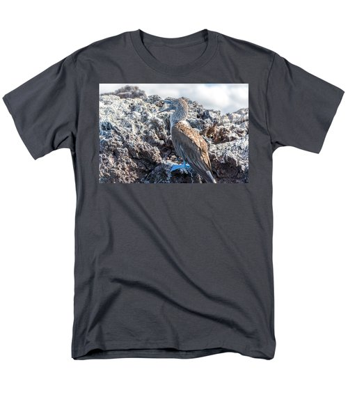 Blue Footed Booby Men's T-Shirt  (Regular Fit) by Jess Kraft