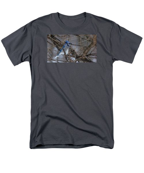 Blue Jay Men's T-Shirt  (Regular Fit) by Dan Traun