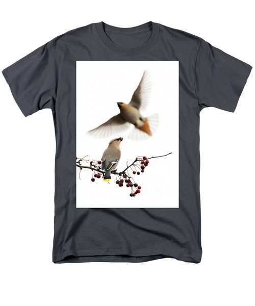 Men's T-Shirt  (Regular Fit) featuring the photograph Bohemian Waxwings by Mircea Costina Photography