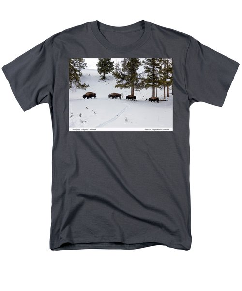 Men's T-Shirt  (Regular Fit) featuring the photograph Buffaloes In Yellowstone National Park by Carol M Highsmith