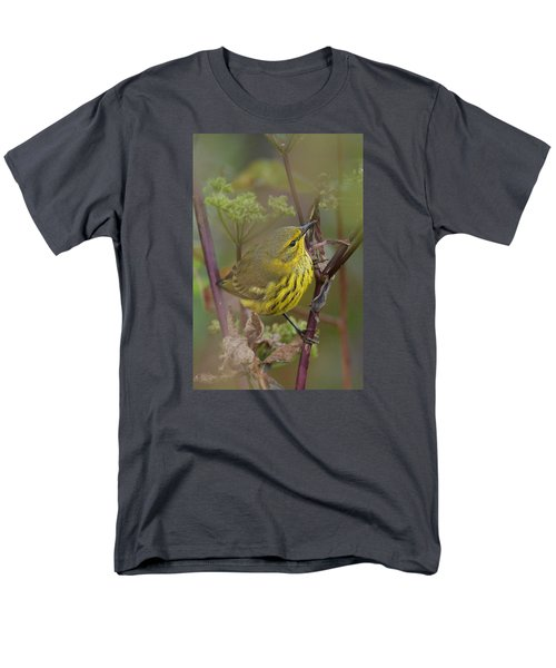 Cape May Warbler In Wees Men's T-Shirt  (Regular Fit) by Alan Lenk