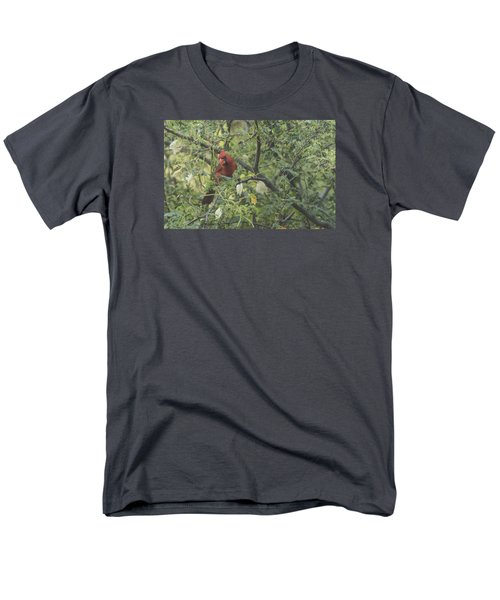 Cardinal In Mesquite Men's T-Shirt  (Regular Fit) by Laura Pratt