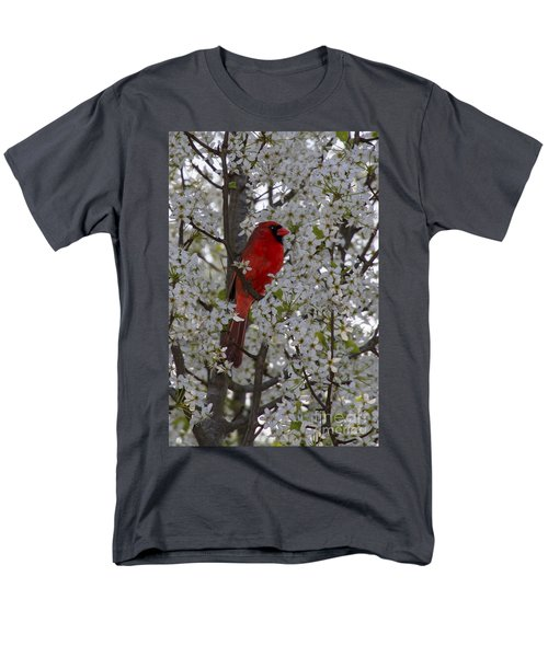 Cardinal In White Blossoms Men's T-Shirt  (Regular Fit) by Barbara Bowen