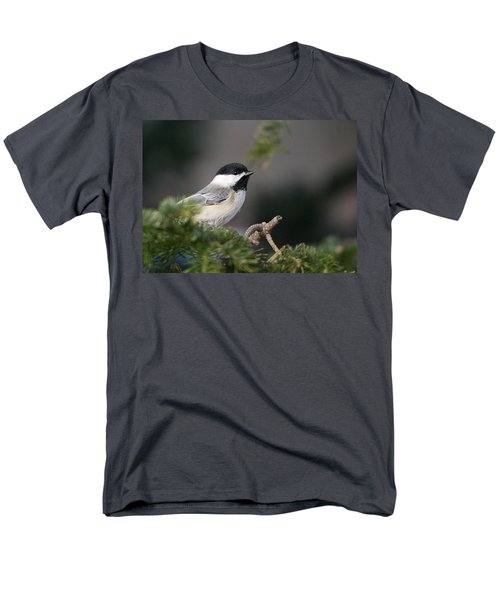 Men's T-Shirt  (Regular Fit) featuring the photograph Chickadee In Balsam Tree by Susan Capuano