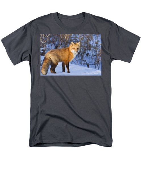 Christmas Fox Men's T-Shirt  (Regular Fit) by Mircea Costina Photography