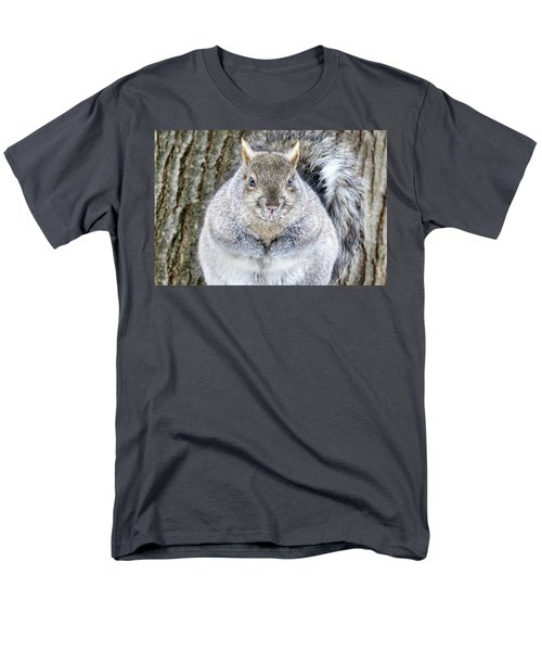 Chubby Squirrel Men's T-Shirt  (Regular Fit) by Brook Burling