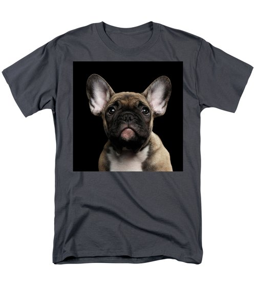 Closeup Portrait French Bulldog Puppy, Cute Looking In Camera Men's T-Shirt  (Regular Fit) by Sergey Taran