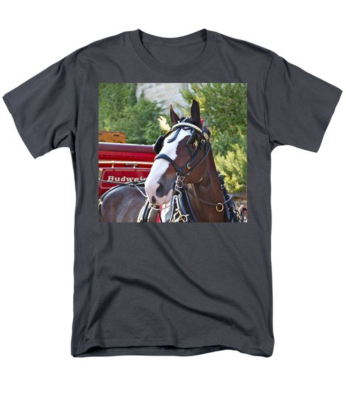 Clydesdale At Esp Men's T-Shirt  (Regular Fit) by Alice Gipson