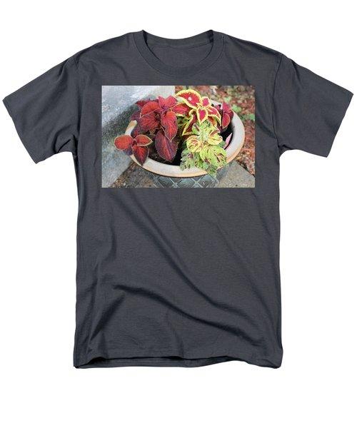 Coleus Men's T-Shirt  (Regular Fit)