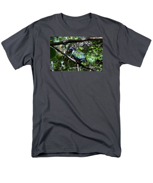 Colorful Men's T-Shirt  (Regular Fit)