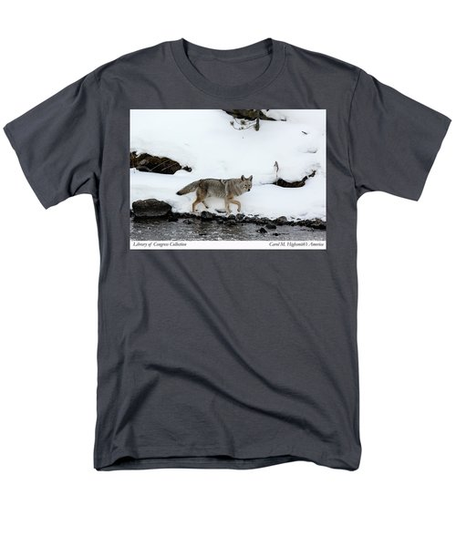 Coyote In Yellowstone National Park Men's T-Shirt  (Regular Fit) by Carol M Highsmith