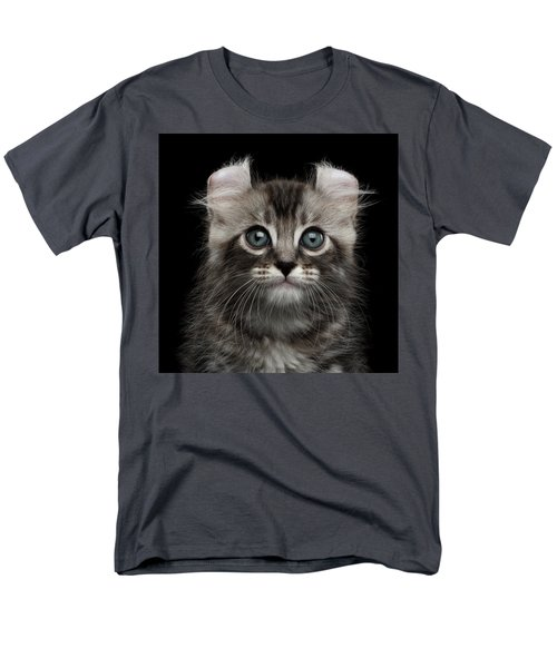 Cute American Curl Kitten With Twisted Ears Isolated Black Background Men's T-Shirt  (Regular Fit) by Sergey Taran