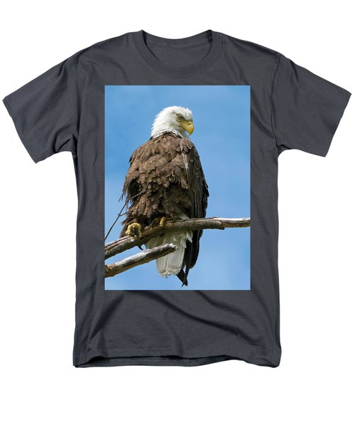 Eagle On Perch Men's T-Shirt  (Regular Fit) by Stephen Flint