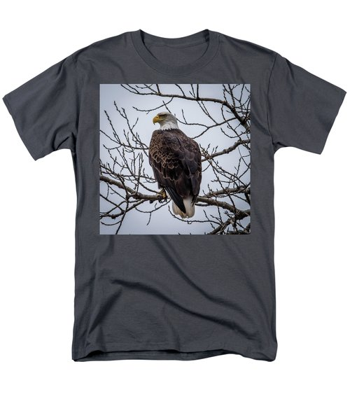 Men's T-Shirt  (Regular Fit) featuring the photograph Eagle Perched by Paul Freidlund