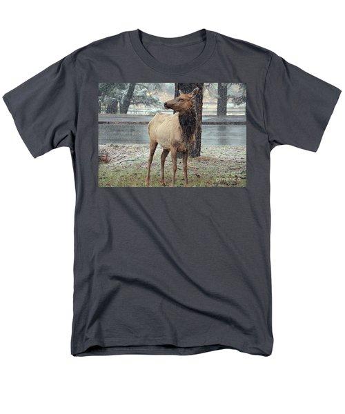 Elk In The Snow Men's T-Shirt  (Regular Fit) by Debby Pueschel