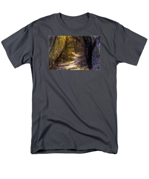 Fairy Woods Artistic  Men's T-Shirt  (Regular Fit) by Leif Sohlman