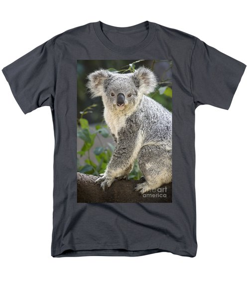 Female Koala Men's T-Shirt  (Regular Fit) by Jamie Pham