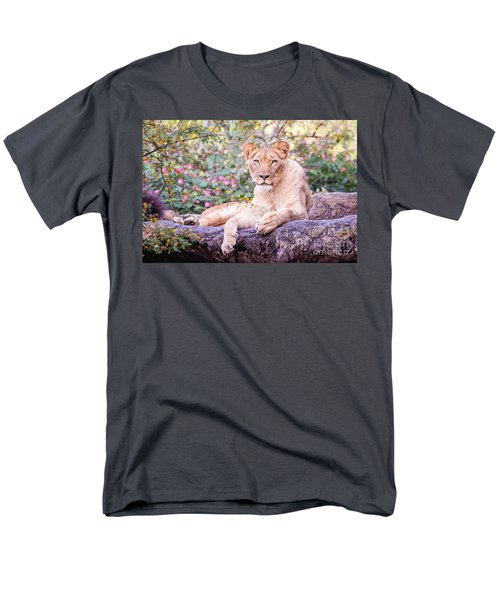 Female Lion Resting Men's T-Shirt  (Regular Fit) by Stephanie Hayes