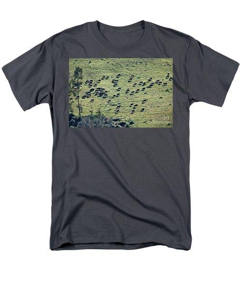 Flock Of Sheep Men's T-Shirt  (Regular Fit) by Bruno Spagnolo