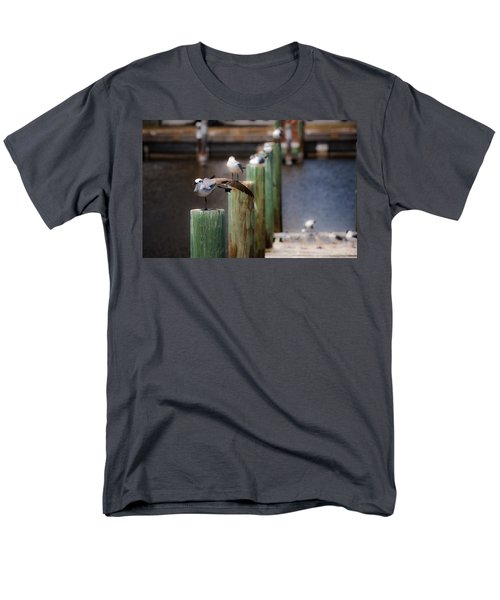 Florida Seagull Playing Men's T-Shirt  (Regular Fit) by Jason Moynihan