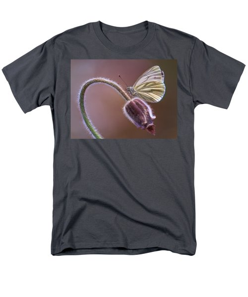 Fresh Pasque Flower And White Butterfly Men's T-Shirt  (Regular Fit) by Jaroslaw Blaminsky