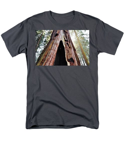 Giant Forest Giant Sequoia Men's T-Shirt  (Regular Fit) by Kyle Hanson