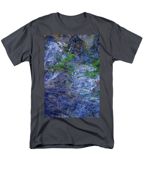 Gorge-2 Men's T-Shirt  (Regular Fit) by Dale Stillman