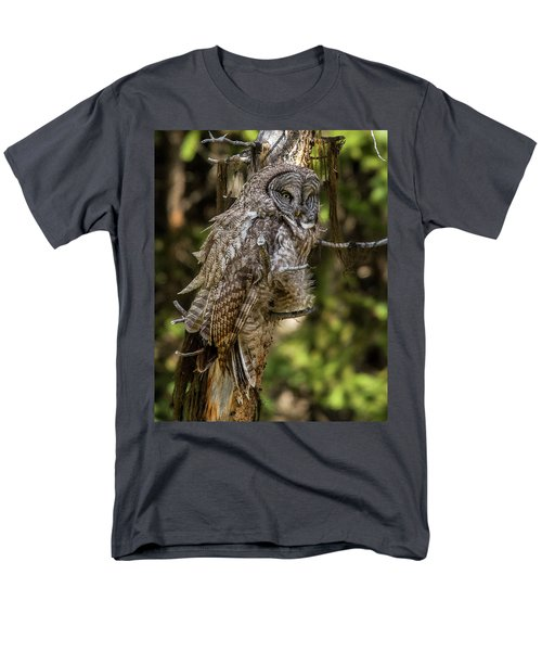 Great Grey Owl In Windy Spring Men's T-Shirt  (Regular Fit) by Yeates Photography