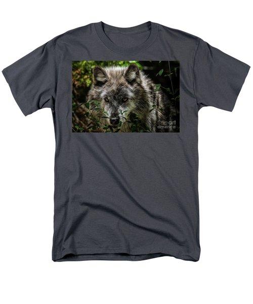 Grey Wolf Men's T-Shirt  (Regular Fit) by Brad Allen Fine Art