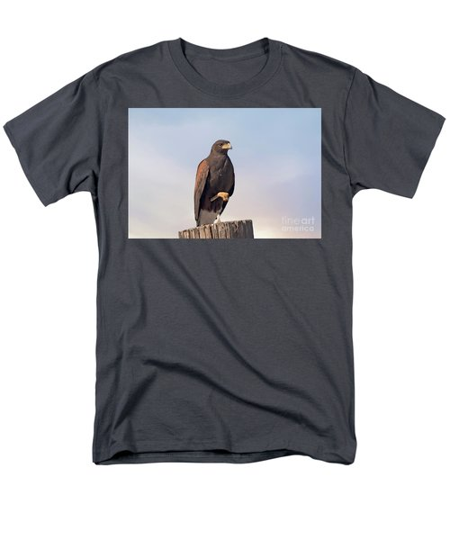 Harris Hawk - Birds Men's T-Shirt  (Regular Fit) by Anne Rodkin
